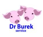Logo Dr Burek